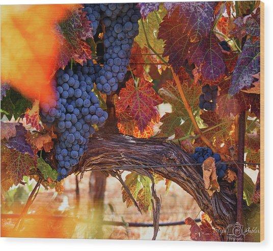 On The Vine Wood Print