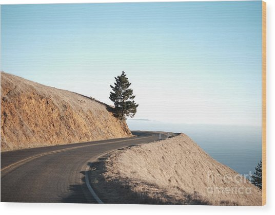 On The Way To Mount Tamalpais Wood Print