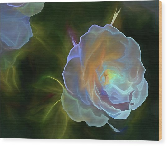 Wood Print featuring the mixed media Open To Light 11 by Lynda Lehmann