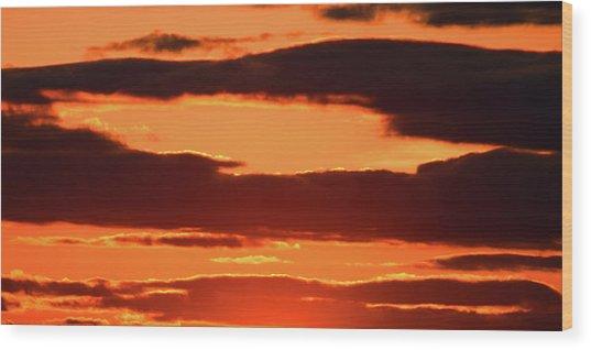 Orange And Black Wood Print