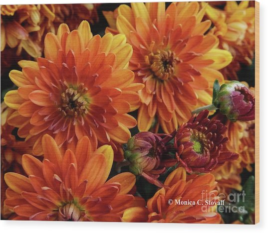 Orange Flowers No. 14 Wood Print
