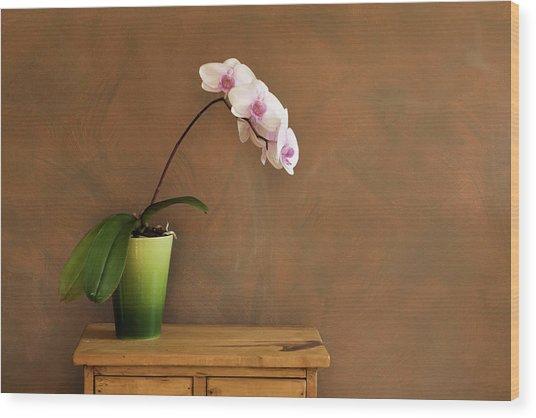 Orchid Still Life Hz Wood Print