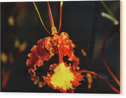 Orchid Study Four Wood Print
