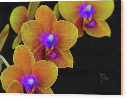 Orchid Study Ten Wood Print