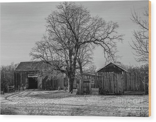 Out In The Barn Yard Wood Print