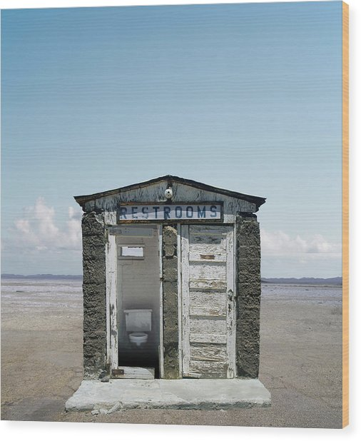 Outhouse On Beach, Close-up Wood Print by Ed Freeman