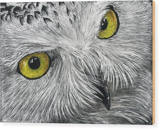 Owl Face Wood Print