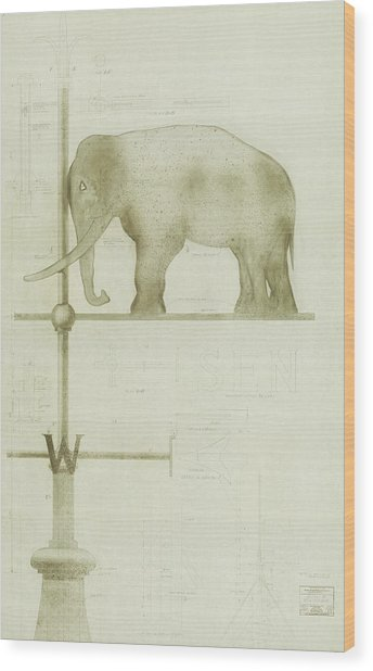 Pachyderm House, Philadelphia Zoo, Detail Of Weather Vane Wood Print