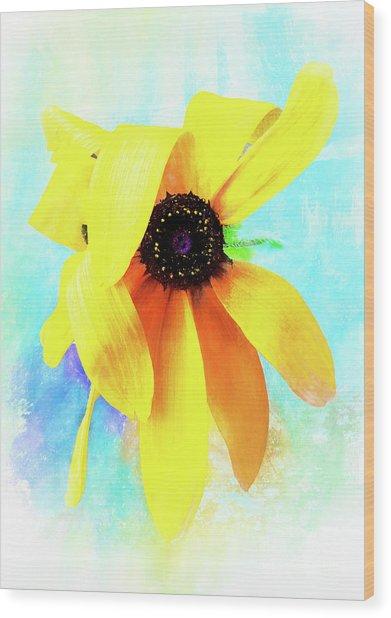 Flopsy - A Charming Wild Black-eyed Susan  Wood Print