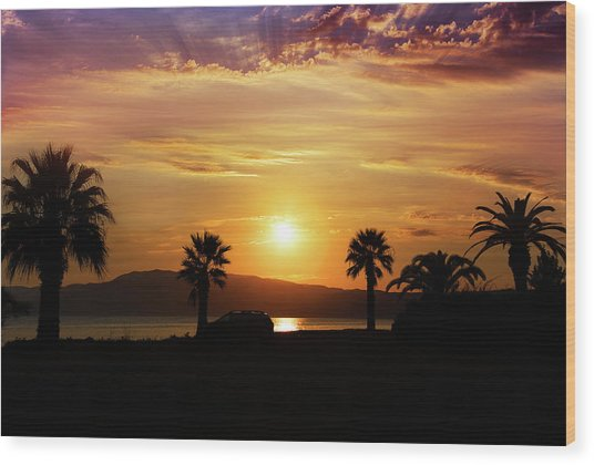 Wood Print featuring the photograph Palm Beach In Greece by Milena Ilieva