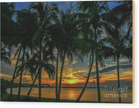 Palm Tree Lagoon Sunrise Wood Print