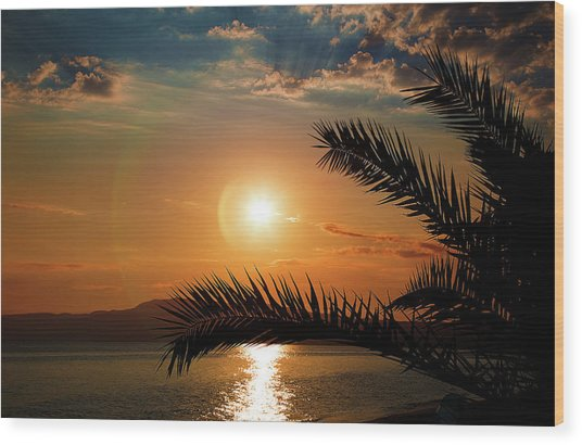 Wood Print featuring the photograph Palm Tree On The Beach by Milena Ilieva