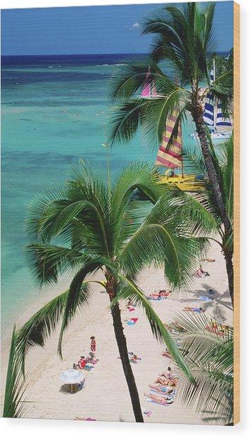 Palm Trees Over Waikiki Beach, Waikiki Wood Print