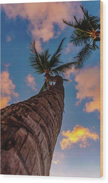 Palm Upward Wood Print