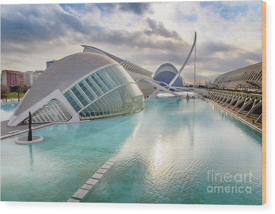 Panoramic Cinema In The City Of Sciences Of Valencia, Spain, Vis Wood Print