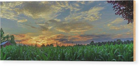 Panoramic Cornfield Sunset Wood Print
