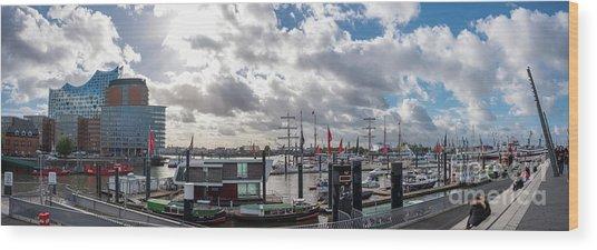 Panoramic View Of Hamburg Wood Print