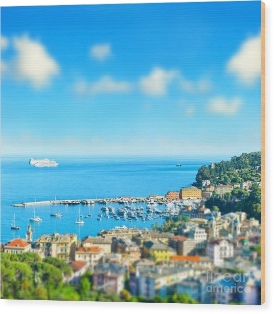 Panoramic View  With Tilt-shift Effect Wood Print by Liligraphie