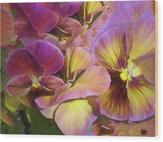 Wood Print featuring the mixed media Pansy Field In Violet And Yellow 12 by Lynda Lehmann
