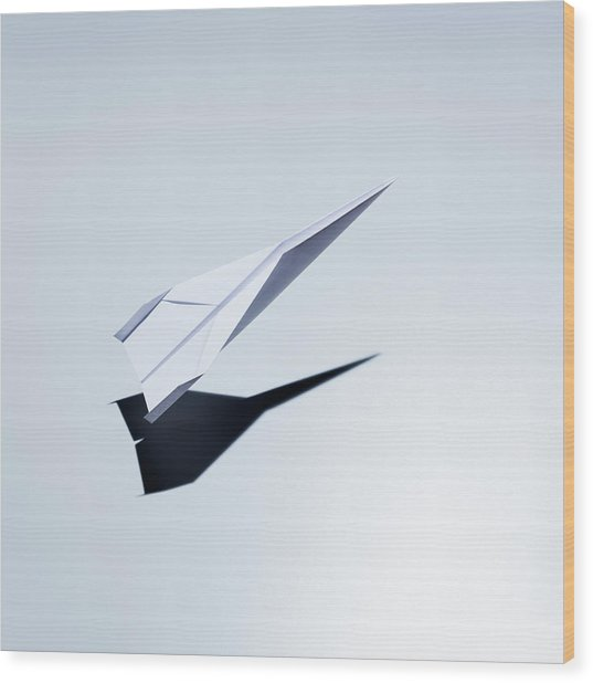 Paper Plane Taking Off Wood Print by Jorg Greuel