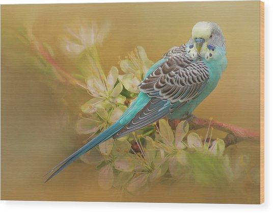 Parakeet Sitting On A Limb Wood Print