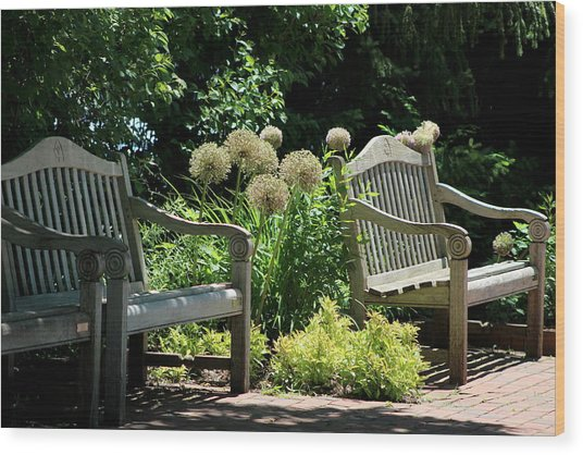 Park Benches At Chicago Botanical Gardens Wood Print