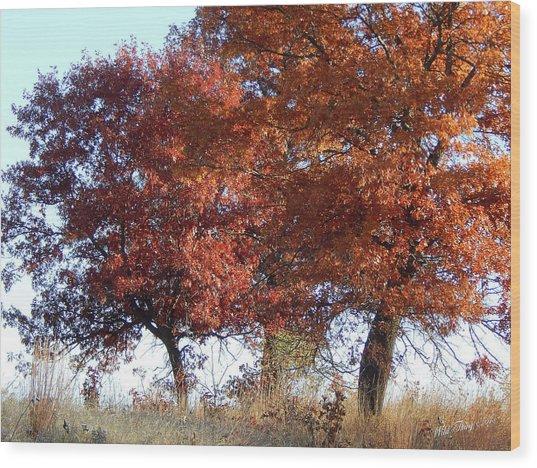 Passing Autumn Wood Print