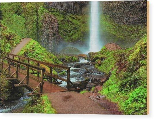 Path At Base Of Lautrolla Falls Wood Print