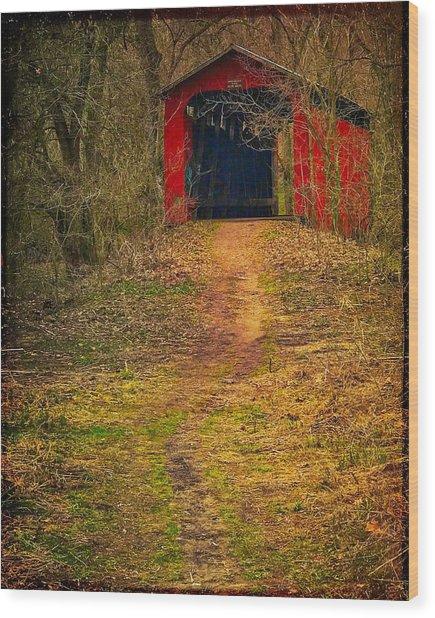 Path To Bridge Wood Print
