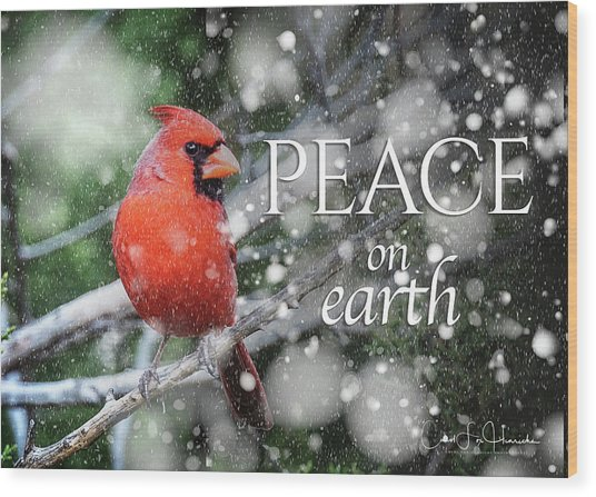 Peace On Earth W/cardinal Wood Print