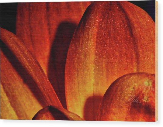 Peach Petals Wood Print