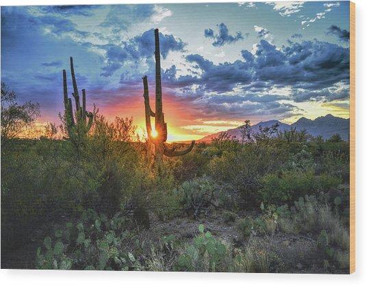 Tucson, Arizona Sagurao Sunset Wood Print