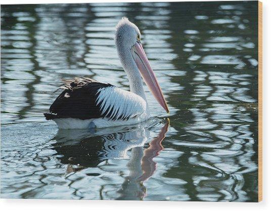 Pelican On The Lake Wood Print
