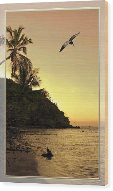 Pelican Sundown Wood Print