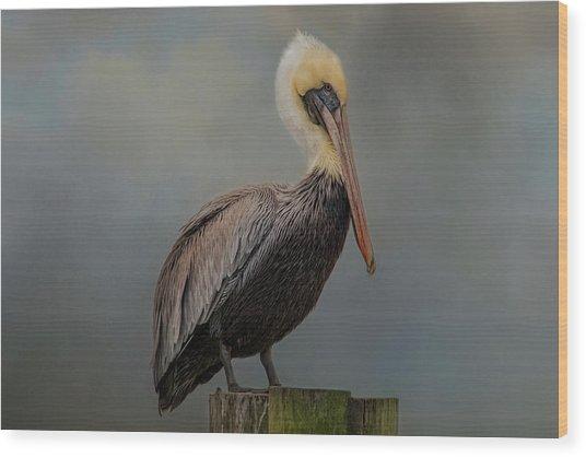 Pelican's Perch Wood Print