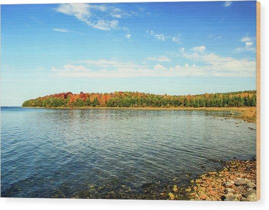 Peninsula Shore In Fall Wood Print