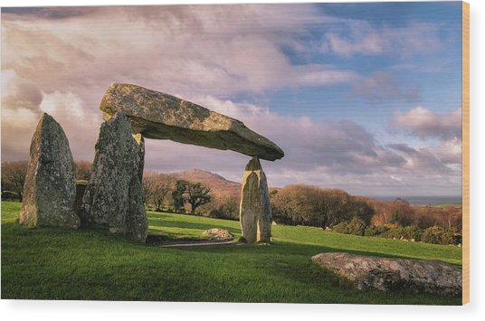 Wood Print featuring the photograph Pentre Ifan Burial Chamber by Elliott Coleman