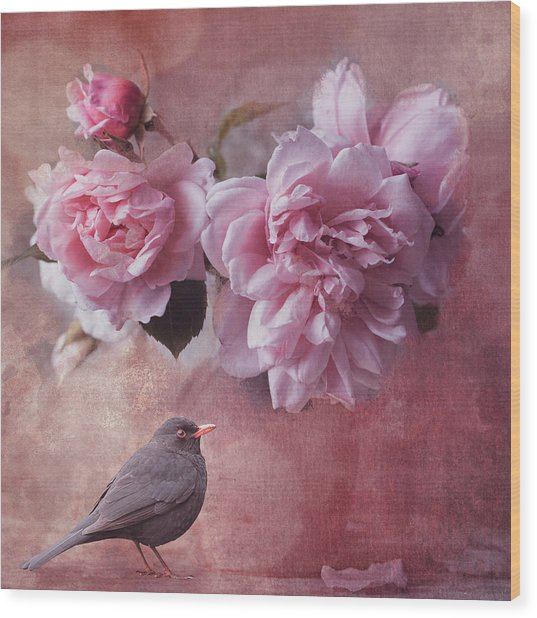 Peonies And Blackbird Wood Print
