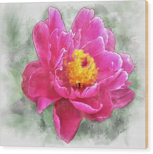 Peony And Bee Wood Print