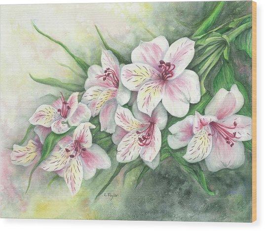 Peruvian Lilies Wood Print