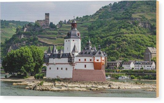 Pfalzgrafenstein Castle Wood Print