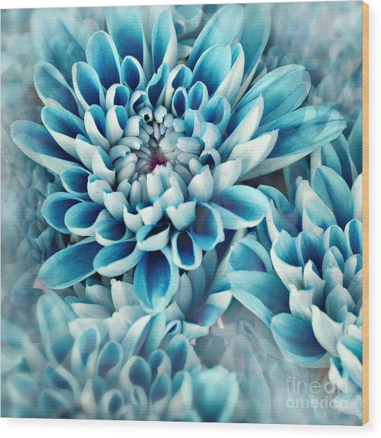 Photo Illustration Of Abstract Flower Wood Print by Annmarie Young