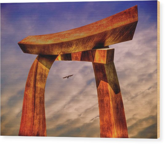 Pi In The Sky Wood Print