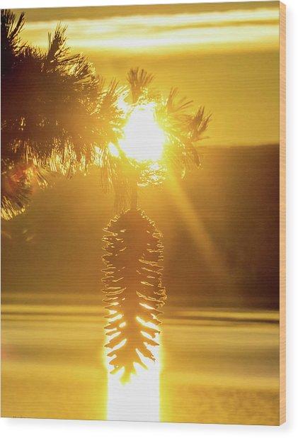 Pine Cone Fire Wood Print