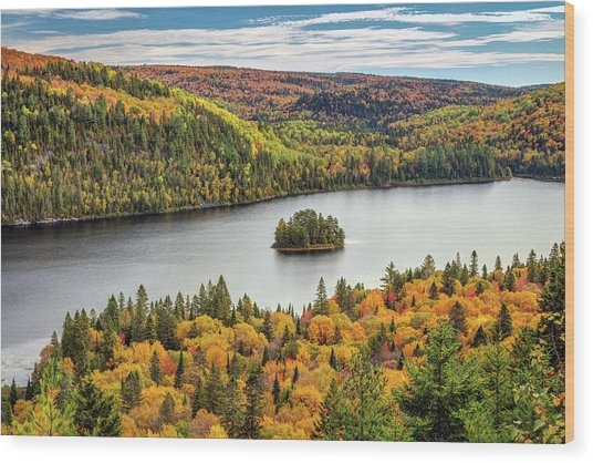 Wood Print featuring the photograph Pine Island At Wapizagonke Lake by Pierre Leclerc Photography