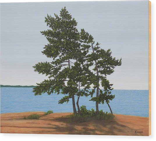 Pine On The Point Wood Print