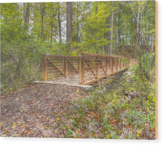 Pine Quarry Park Bridge Wood Print