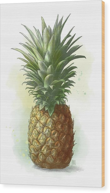 Wood Print featuring the drawing Pineapple by Clint Hansen