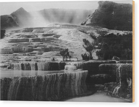 Pink & White Terraces Wood Print by General Photographic Agency