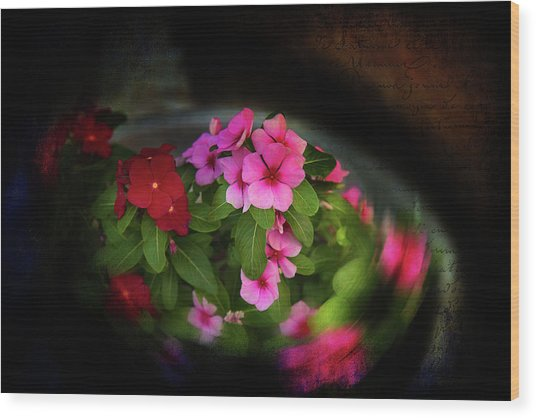 Wood Print featuring the photograph Pink And Red by Milena Ilieva